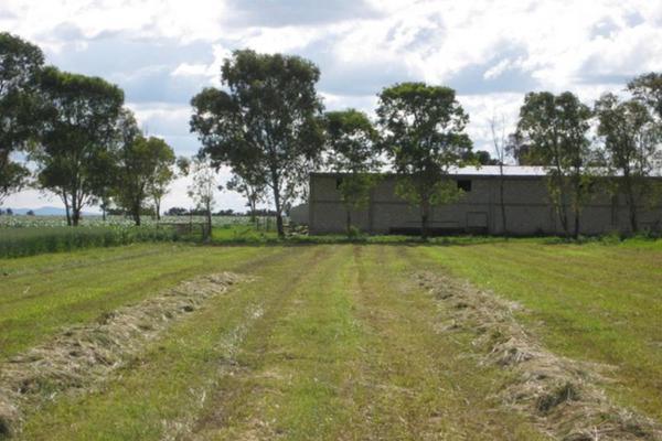 Foto de rancho en venta en sin nombre sin numero, san antonio polotitlán, polotitlán, méxico, 8861108 No. 01
