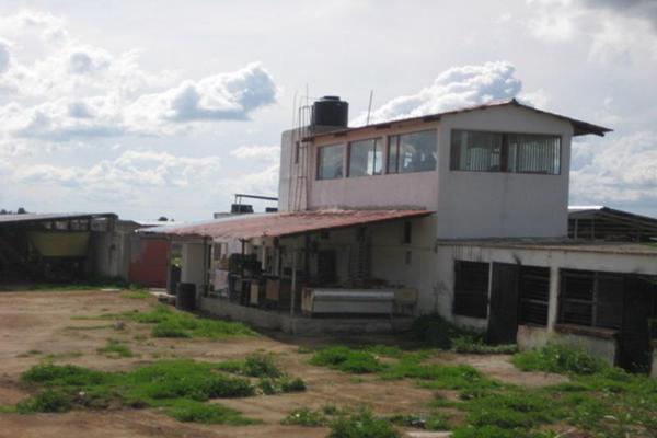 Foto de rancho en venta en sin nombre sin numero, san antonio polotitlán, polotitlán, méxico, 8861108 No. 07