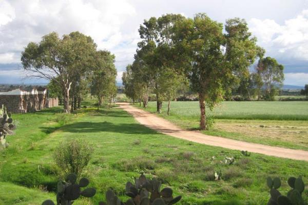 Foto de rancho en venta en sin nombre sin numero, san antonio polotitlán, polotitlán, méxico, 8861108 No. 08
