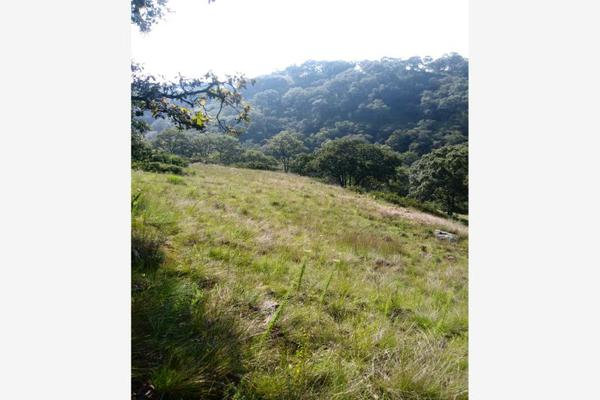 Foto de terreno habitacional en venta en sin nombre sin numero, santa catarina, villa del carbón, méxico, 6137329 No. 07