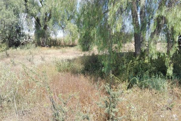 Foto de terreno habitacional en venta en sin nombre , taxhido, tepeji del río de ocampo, hidalgo, 5384170 No. 08