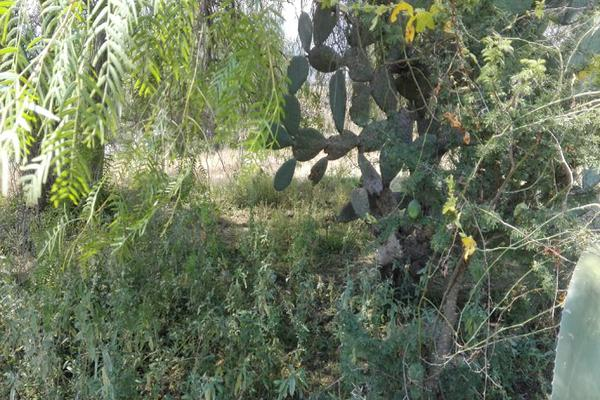 Foto de terreno habitacional en venta en sin nombre , taxhido, tepeji del río de ocampo, hidalgo, 5384170 No. 18