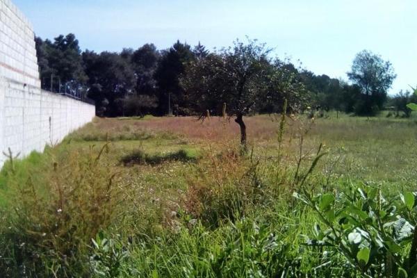 Foto de terreno habitacional en venta en sin nombre , tecola, cuaxomulco, tlaxcala, 6170485 No. 02