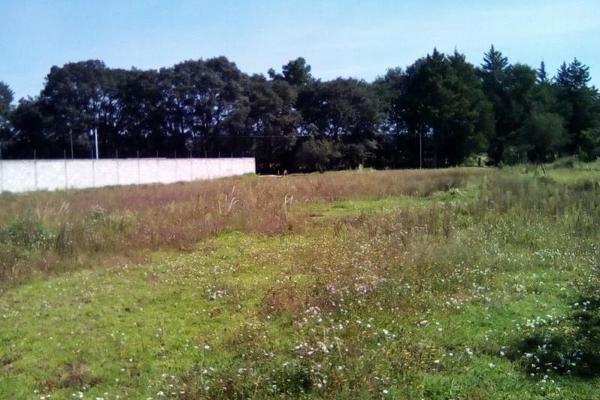 Foto de terreno habitacional en venta en sin nombre , tecola, cuaxomulco, tlaxcala, 6170485 No. 04