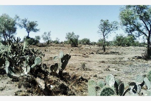 Foto de terreno industrial en venta en avenida sin numero, las pintas (el porvenir), tolcayuca, hidalgo, 2706744 No. 06