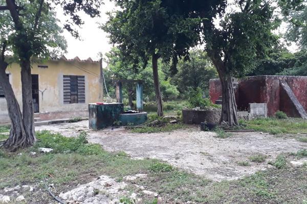 Foto de terreno industrial en venta en sin numero , san jose tzal, mérida, yucatán, 8122265 No. 01