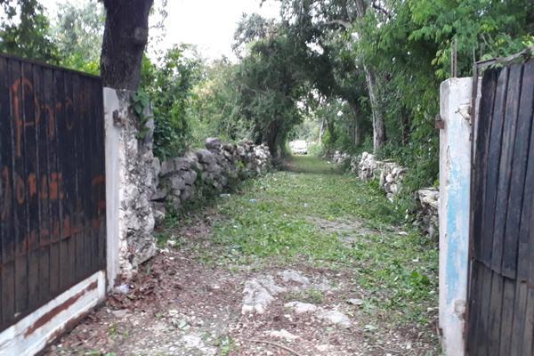 Foto de terreno industrial en venta en sin numero , san jose tzal, mérida, yucatán, 8122265 No. 03
