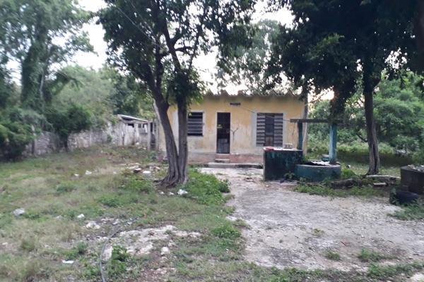 Foto de terreno industrial en venta en sin numero , san jose tzal, mérida, yucatán, 8122265 No. 04