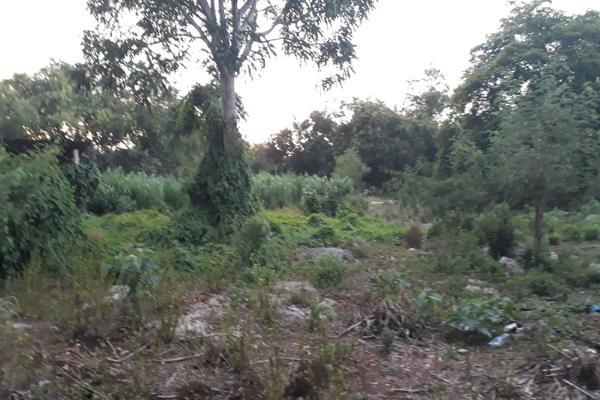 Foto de terreno industrial en venta en sin numero , san jose tzal, mérida, yucatán, 8122265 No. 05