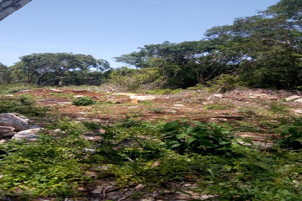 Foto de terreno industrial en venta en sin numero , yaxche, mérida, yucatán, 8122928 No. 02