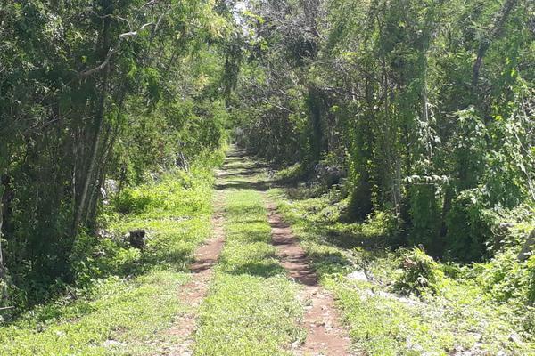 Foto de terreno industrial en venta en sin numero , yaxche, mérida, yucatán, 8122928 No. 03
