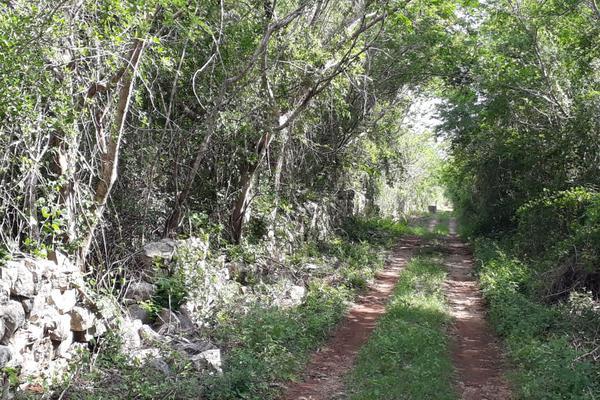 Foto de terreno industrial en venta en sin numero , yaxche, mérida, yucatán, 8122928 No. 04