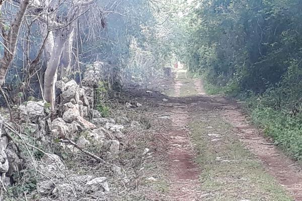 Foto de terreno industrial en venta en sin numero , yaxche, mérida, yucatán, 8122928 No. 05