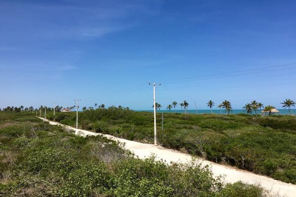 Foto de terreno habitacional en venta en  , sisal, hunucmá, yucatán, 7492622 No. 09