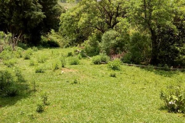 Foto de terreno habitacional en venta en sn 1, el jagüey de las marzanas, totolapan, morelos, 8870441 No. 02