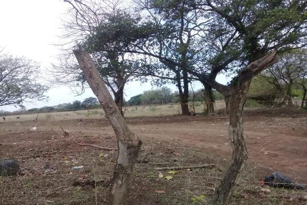 Foto de terreno habitacional en venta en sn , 2 lomas, veracruz, veracruz de ignacio de la llave, 0 No. 05
