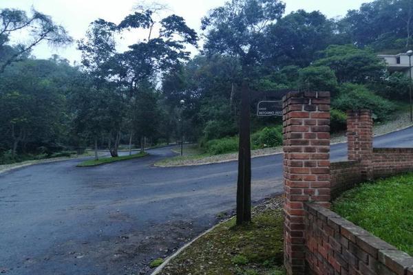 Foto de casa en venta en sn , arboledas san pedro, coatepec, veracruz de ignacio de la llave, 19264205 No. 06