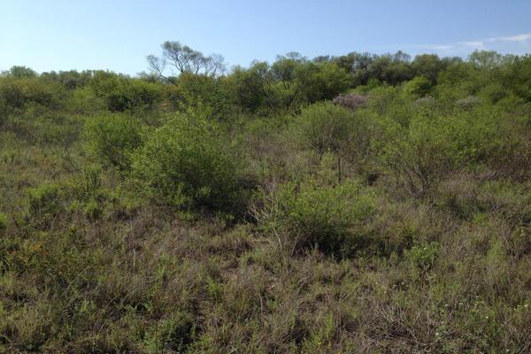 Foto de terreno habitacional en venta en s/n , atongo de abajo, cadereyta jiménez, nuevo león, 9986466 No. 09