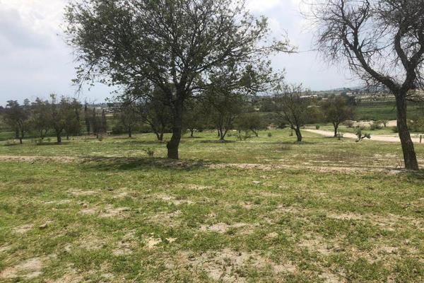 Foto de terreno habitacional en venta en sn , atotonilco (el resurgimiento), puebla, puebla, 7303813 No. 05