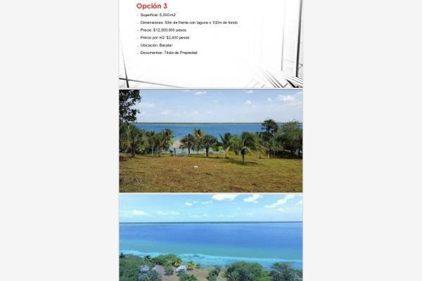Foto de terreno habitacional en venta en s/n , bacalar, bacalar, quintana roo, 10152006 No. 05