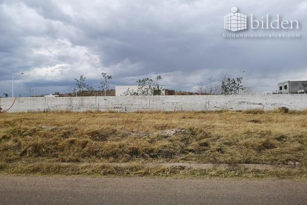 Foto de terreno habitacional en venta en s/n , buenos aires, durango, durango, 9300710 No. 08
