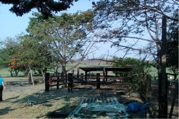 Foto de terreno habitacional en venta en sn , cabo verde, veracruz, veracruz de ignacio de la llave, 0 No. 07