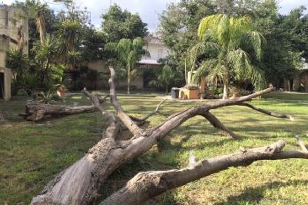 Foto de terreno comercial en renta en s/n , centro, monterrey, nuevo león, 6169979 No. 07