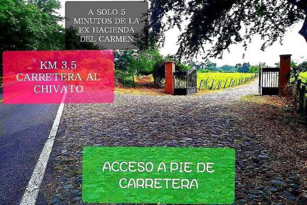 Foto de terreno habitacional en venta en sn , chivato, villa de álvarez, colima, 0 No. 02