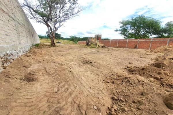 Foto de terreno habitacional en venta en sn , chivato, villa de álvarez, colima, 0 No. 03
