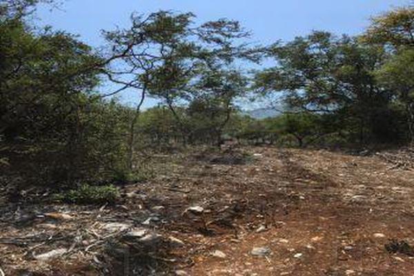 Foto de terreno comercial en venta en s/n , el barrial, santiago, nuevo león, 9972213 No. 02
