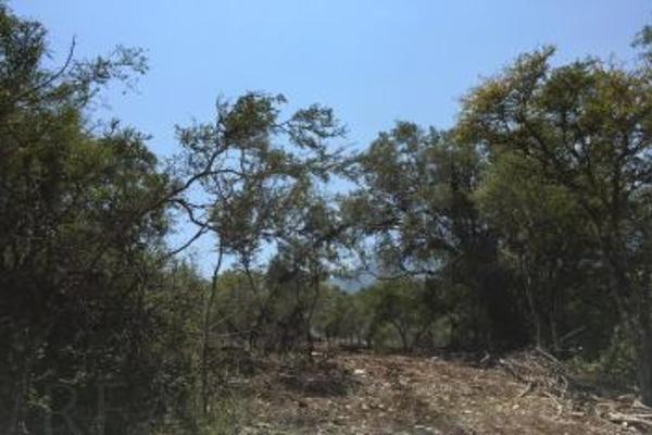 Foto de terreno comercial en venta en s/n , el barro, monterrey, nuevo león, 0 No. 04