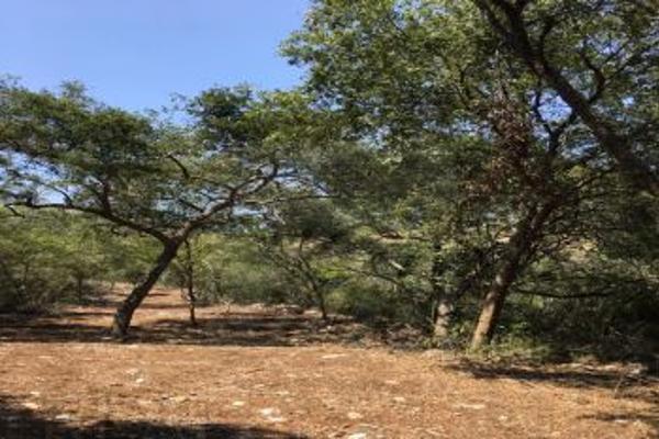 Foto de terreno comercial en venta en s/n , el barro, monterrey, nuevo león, 0 No. 06