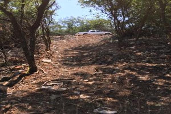 Foto de terreno comercial en venta en s/n , el barro, monterrey, nuevo león, 0 No. 07
