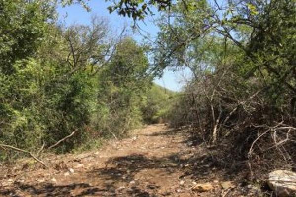 Foto de terreno comercial en venta en s/n , el barro, monterrey, nuevo león, 0 No. 08