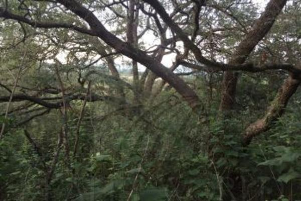 Foto de terreno comercial en venta en s/n , el barro, monterrey, nuevo león, 0 No. 10