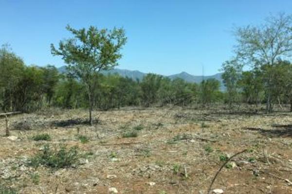 Foto de terreno comercial en venta en s/n , el barro, monterrey, nuevo león, 0 No. 14