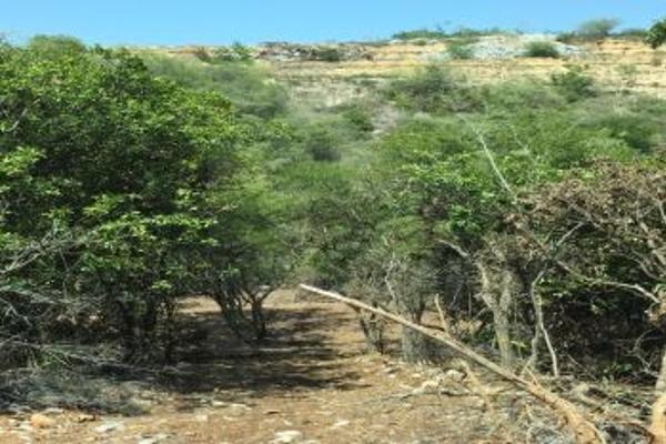 Foto de terreno comercial en venta en s/n , el barro, monterrey, nuevo león, 0 No. 17