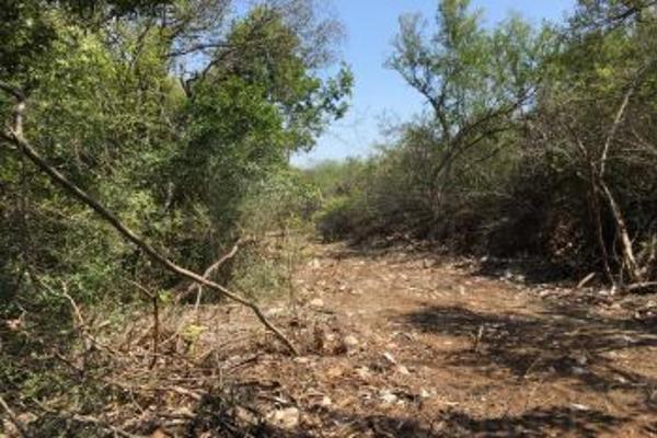 Foto de terreno comercial en venta en s/n , el barro, monterrey, nuevo león, 0 No. 19