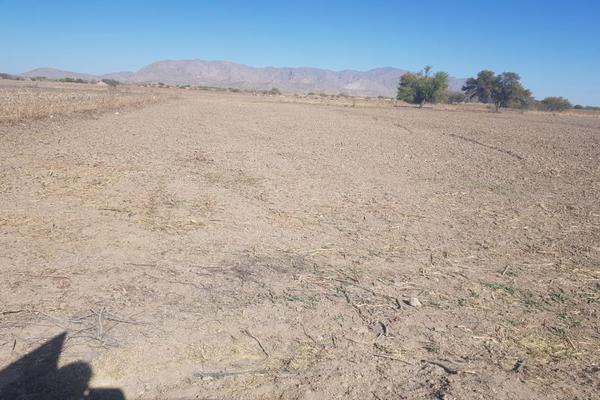 Foto de terreno habitacional en venta en s/n , el cuatro, torreón, coahuila de zaragoza, 10143842 No. 05