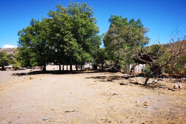 Foto de terreno habitacional en venta en s/n , el pueblito, durango, durango, 10082754 No. 02