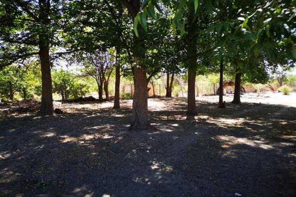 Foto de terreno habitacional en venta en s/n , el pueblito, durango, durango, 10082754 No. 06