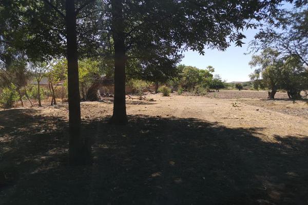 Foto de terreno habitacional en venta en s/n , el pueblito, durango, durango, 10082754 No. 07