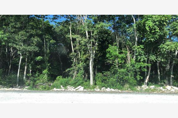 Foto de terreno habitacional en venta en s/n , el tigrillo, solidaridad, quintana roo, 10170453 No. 08