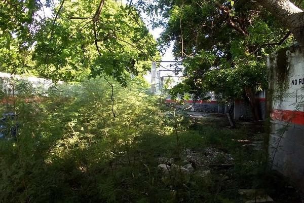 Foto de terreno comercial en venta en s/n , felipe carrillo puerto nte, mérida, yucatán, 5952059 No. 03