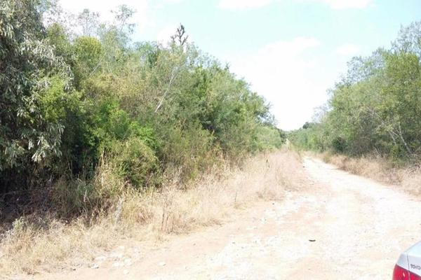 Foto de terreno comercial en venta en s/n , gil de leyva, montemorelos, nuevo león, 9984944 No. 03