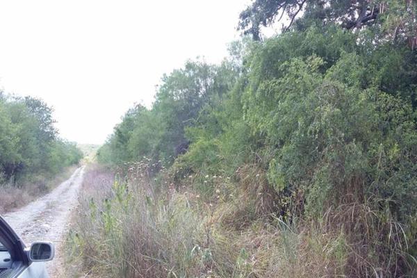 Foto de terreno comercial en venta en s/n , gil de leyva, montemorelos, nuevo león, 9984944 No. 04