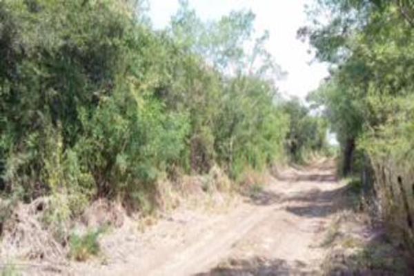 Foto de terreno comercial en venta en s/n , gil de leyva, montemorelos, nuevo león, 9984944 No. 05