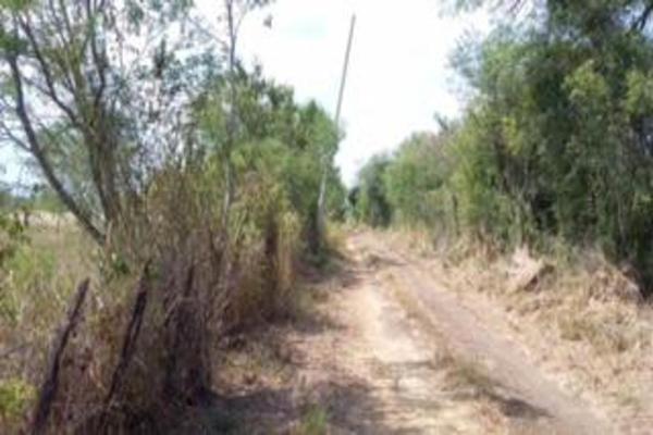 Foto de terreno comercial en venta en s/n , gil de leyva, montemorelos, nuevo león, 9984944 No. 06
