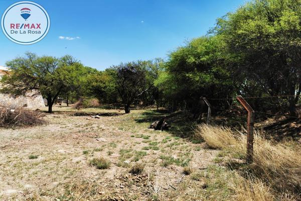 Foto de terreno comercial en venta en sn , j guadalupe rodriguez, durango, durango, 13023232 No. 03