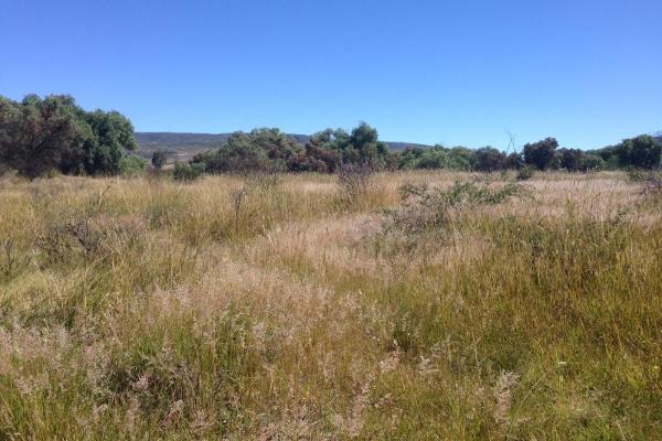 Foto de terreno industrial en venta en s/n , jofrito, querétaro, querétaro, 2703607 No. 04